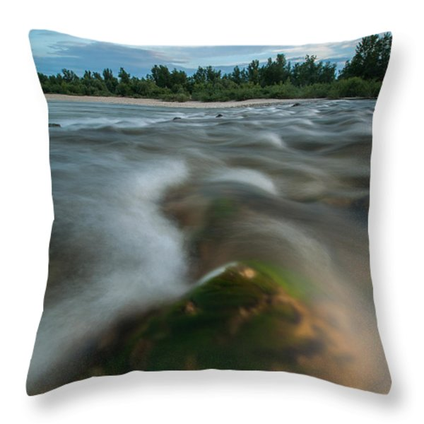 Spring Afternoon Throw Pillow by Davorin Mance