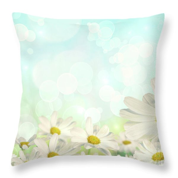 Spring Background with daisies Throw Pillow by Sandra Cunningham