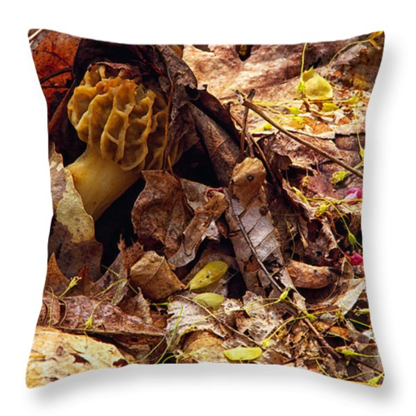 Spring Bounty Morel Mushroom Throw Pillow by Thomas R Fletcher