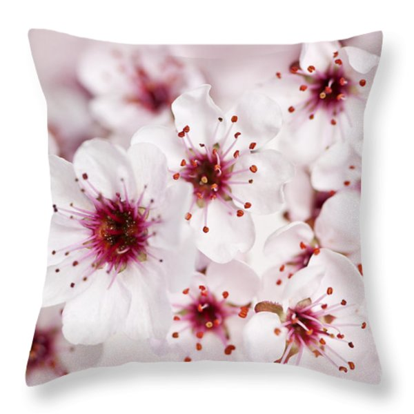 Spring Cherry Blossom Throw Pillow by Elena Elisseeva
