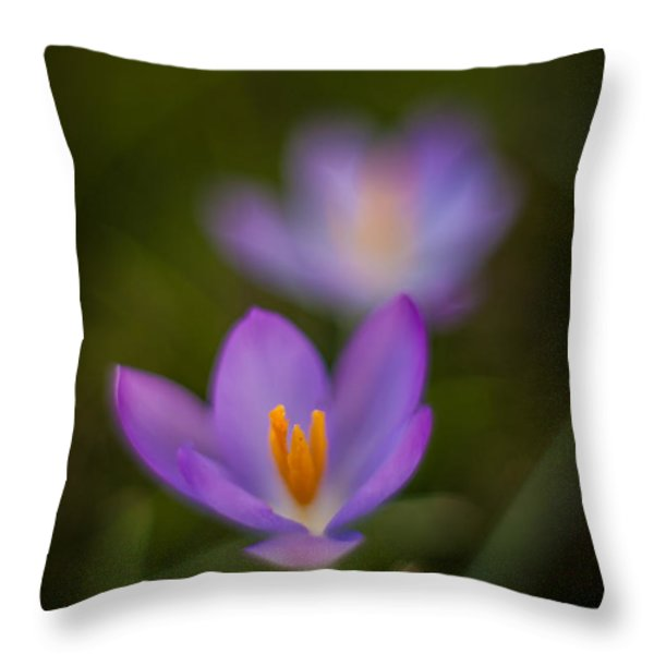 Spring Crocus Glow Throw Pillow by Mike Reid