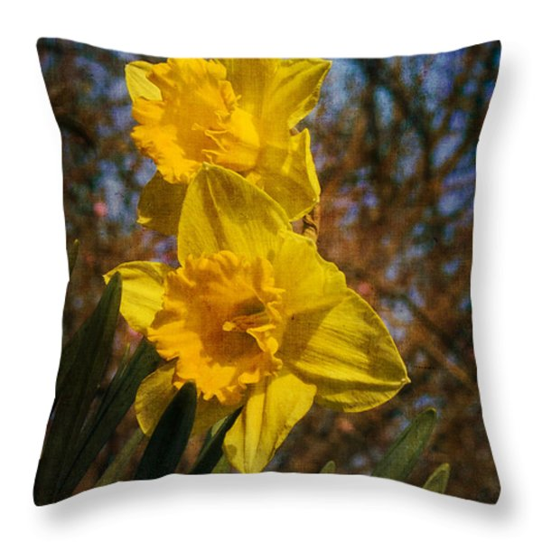 Spring Daffodils  Throw Pillow by Brian Roscorla