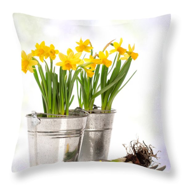 Spring Daffodils Throw Pillow by Amanda And Christopher Elwell