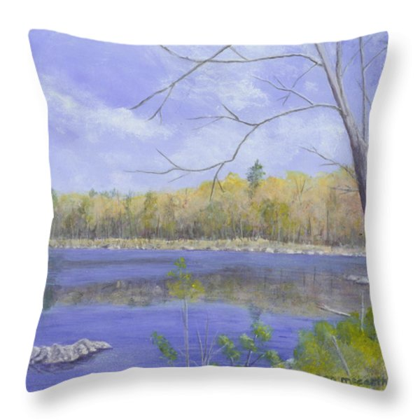 Spring Day Throw Pillow by Nan McCarthy