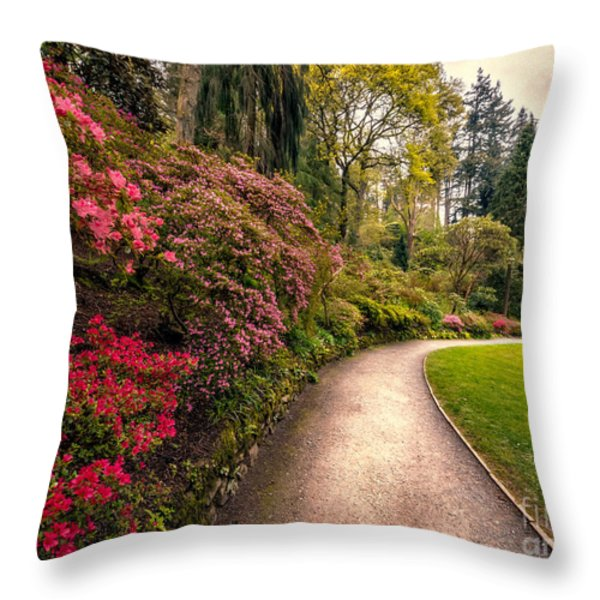 Spring Footpath Throw Pillow by Adrian Evans