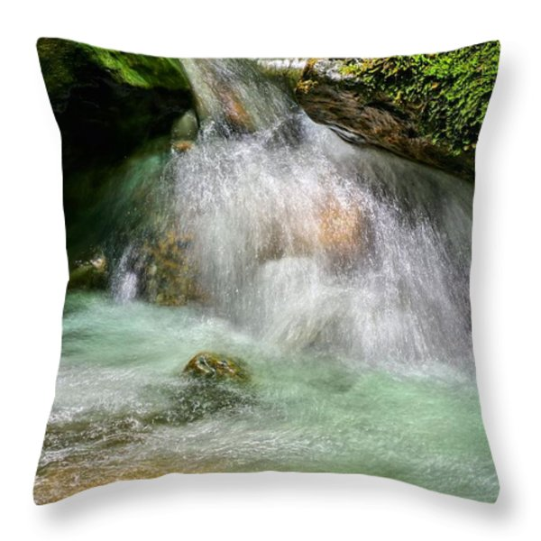 Spring Fresh Throw Pillow by JC Findley