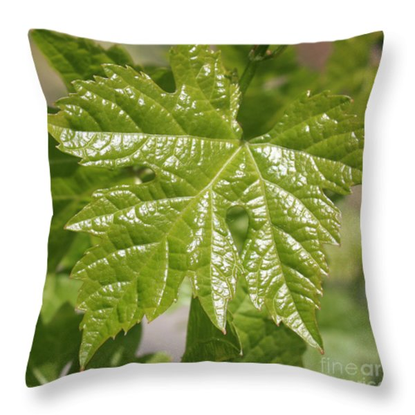 Spring Grape Leaf Throw Pillow by Carol Groenen