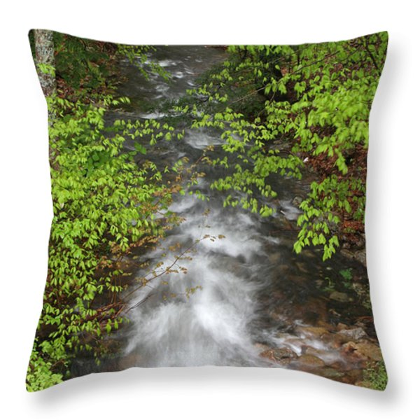 Spring Green Framing Bubble Brook  Throw Pillow by Juergen Roth