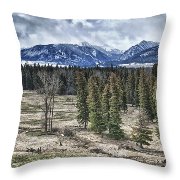 Spring in the Wallowas Throw Pillow by Adele Buttolph