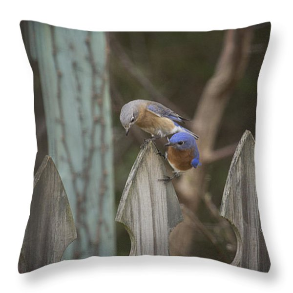 Spring Is Coming II Throw Pillow by Cris Hayes