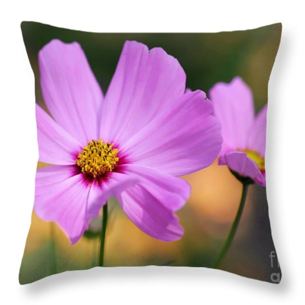 Spring Is Here Throw Pillow by Sabrina L Ryan