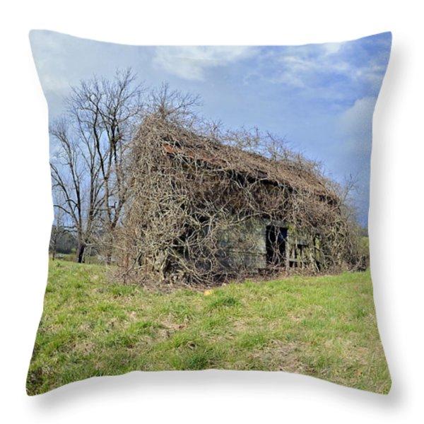 Spring of Yore Throw Pillow by Susan Leggett