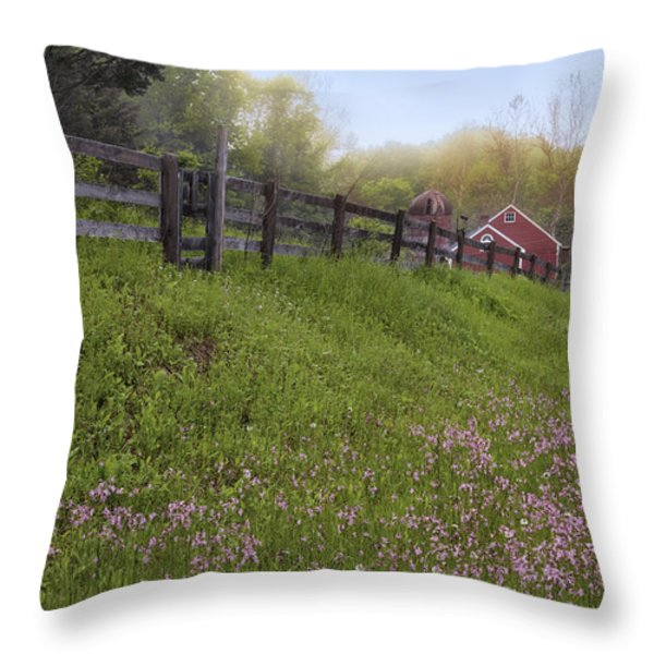Spring on the farm Throw Pillow by Bill  Wakeley