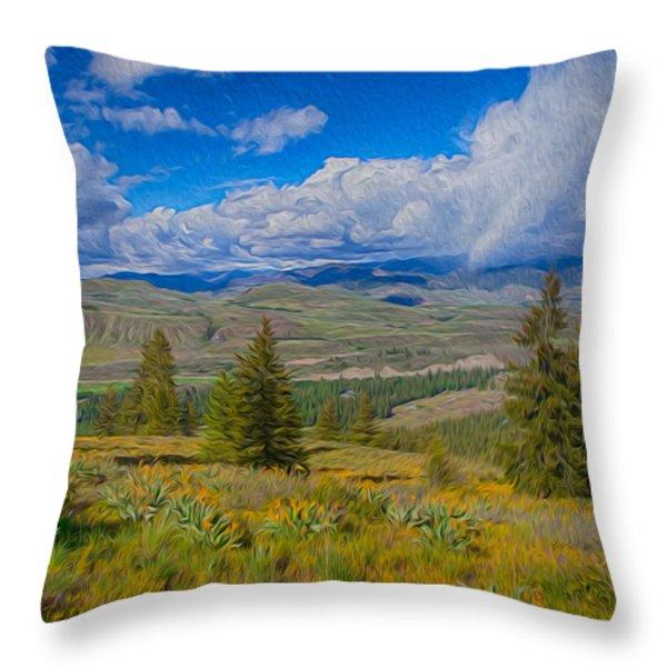 Spring Rain Across a Valley Throw Pillow by Omaste Witkowski