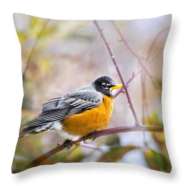 Spring Robin Throw Pillow by Christina Rollo