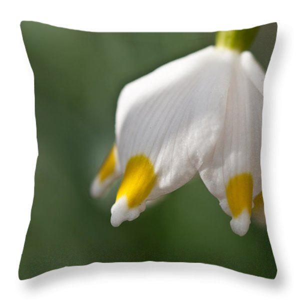 Spring Snowflake Throw Pillow by Andreas Levi