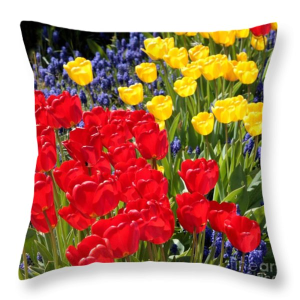 Spring Sunshine Throw Pillow by Carol Groenen