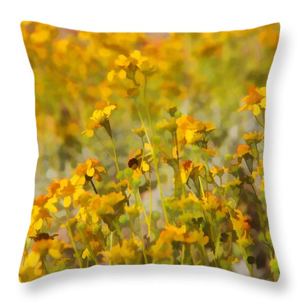 Spring Throw Pillow by Tammy Espino