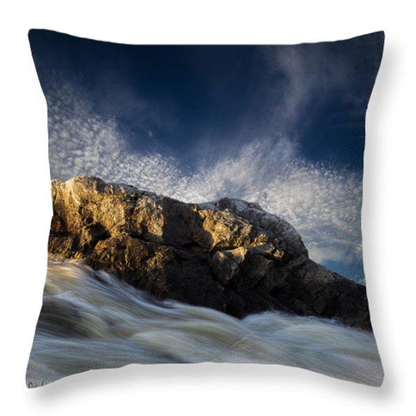 Spring Thaw Throw Pillow by Bob Orsillo