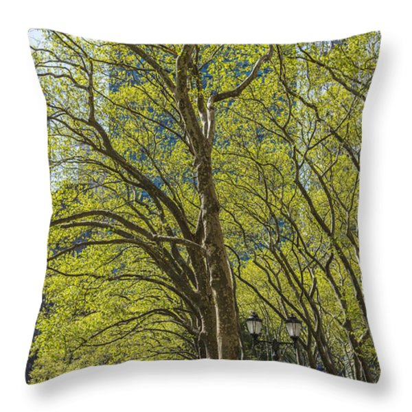 Spring Time In Bryant Park New York Throw Pillow by Angela A Stanton
