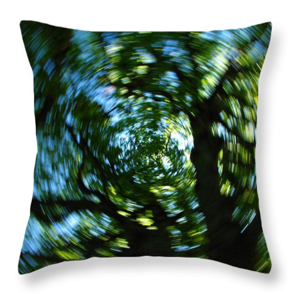 Spring Tree Carousel Throw Pillow by Juergen Roth