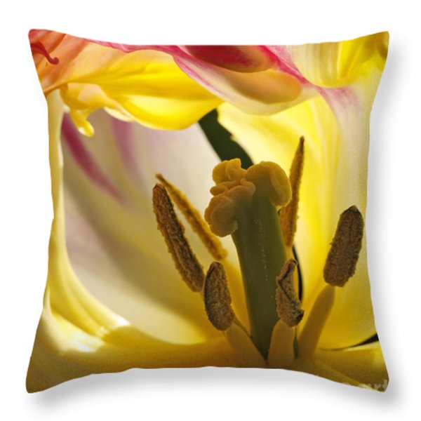 Spring Tulip Throw Pillow by Inge Riis McDonald