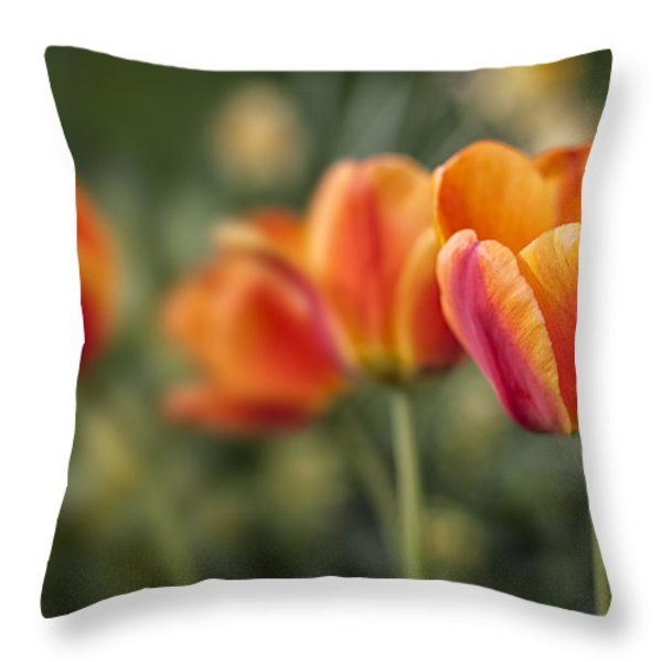 Spring Tulips Throw Pillow by Adam Romanowicz