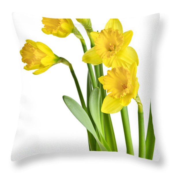 Spring yellow daffodils Throw Pillow by Elena Elisseeva