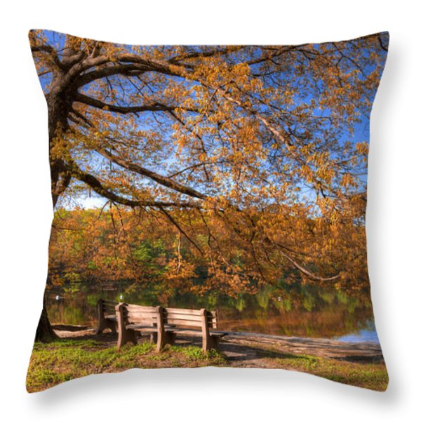 Springtime Fire Throw Pillow by Debra and Dave Vanderlaan