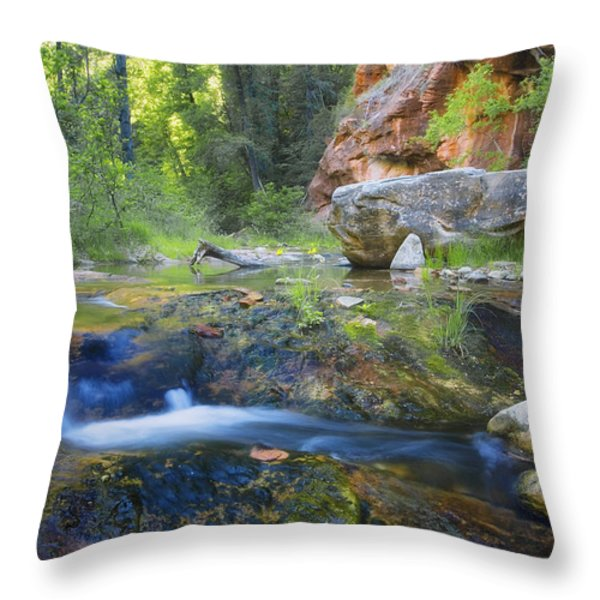 Springtime In The Canyon Throw Pillow by Peter Coskun