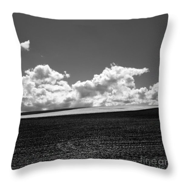 Sprouting field of sunflowers and field of rape at back. Auvergne. France Throw Pillow by BERNARD JAUBERT