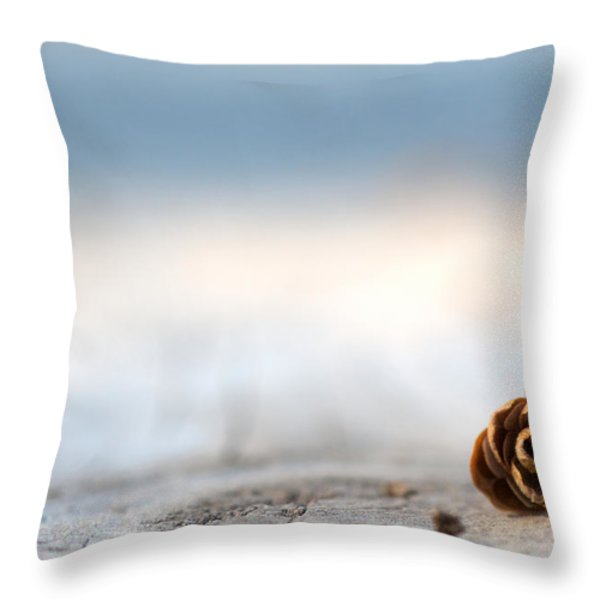 Squirrel Leftovers Throw Pillow by Lisa Knechtel