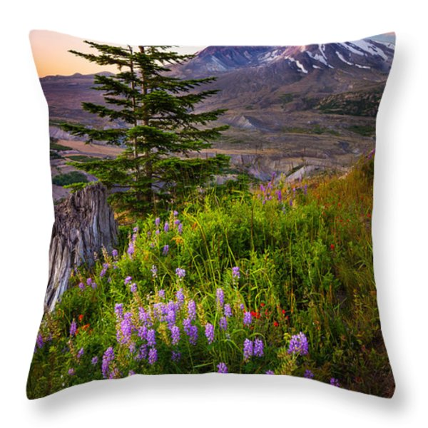 St Helens Caldera Throw Pillow by Inge Johnsson