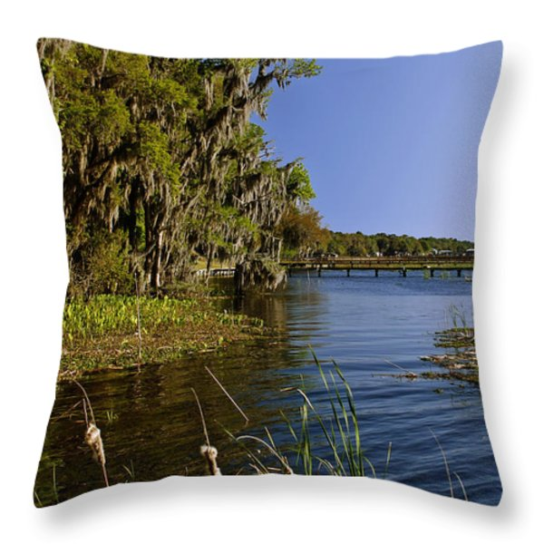 St Johns River Florida Throw Pillow by Christine Till