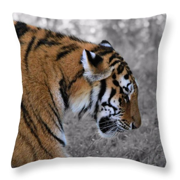 Stalking Tiger Throw Pillow by Dan Sproul
