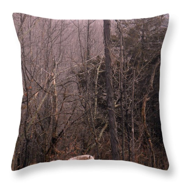 Stallion In The Mountain Pasture Throw Pillow by Patricia Keller