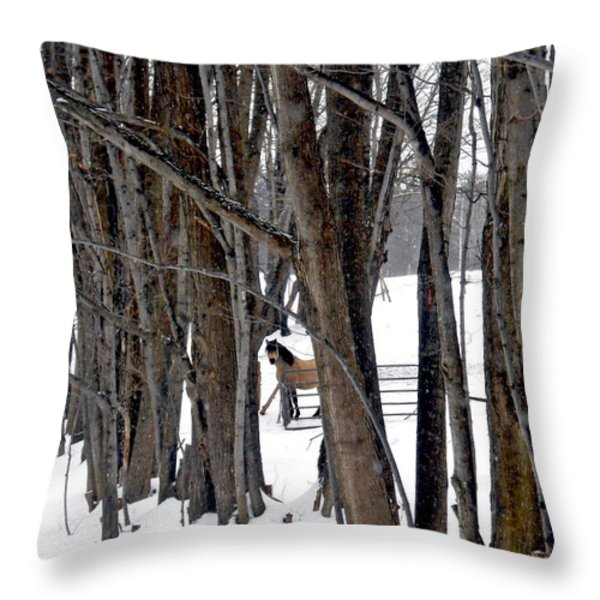 Stallion In The Woods Throw Pillow by Patricia Keller