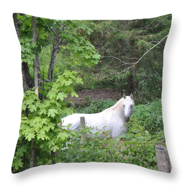 Stallion On Independence Day Throw Pillow by Patricia Keller