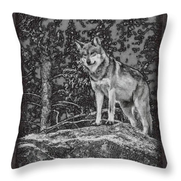 Standing Tall Throw Pillow by Ernie Echols