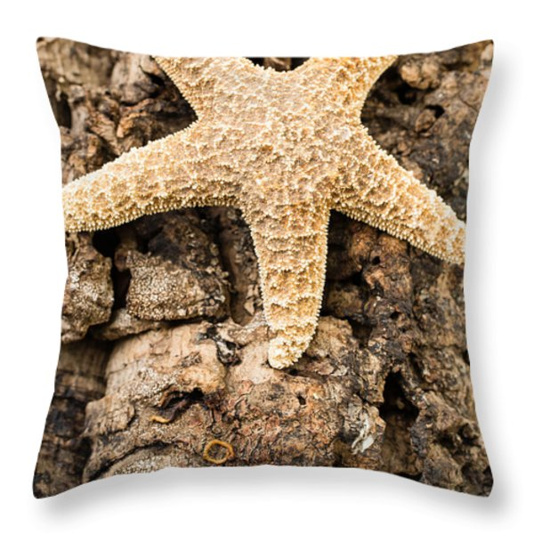 Starfish Throw Pillow by Edward Fielding