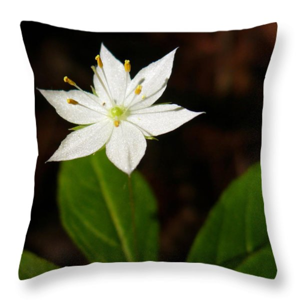 Starflower Throw Pillow by Christina Rollo
