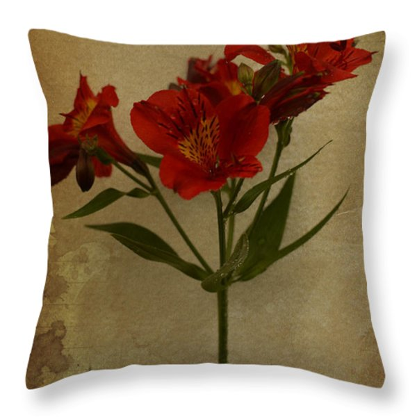 Stargazers On Paper Throw Pillow by Marco Oliveira