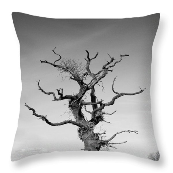 Stark Tree Throw Pillow by Pixel Chimp