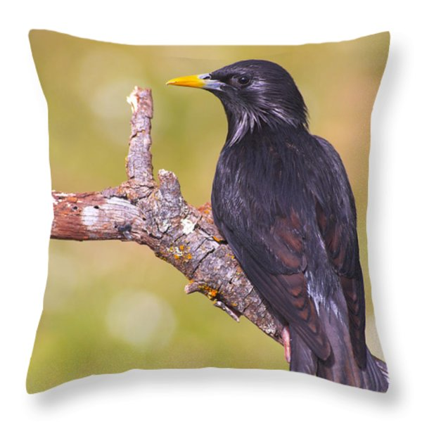 Starlings Throw Pillow by Guido Montanes Castillo