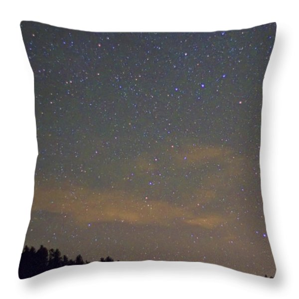 Starry Night Throw Pillow by James BO  Insogna