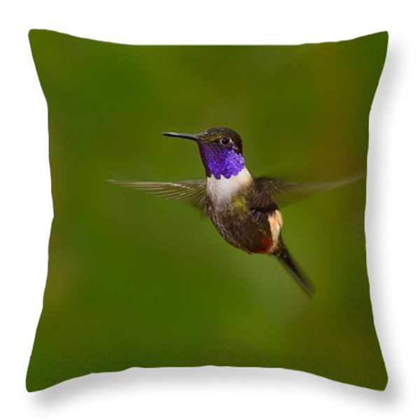Stationary Throw Pillow by Tony Beck
