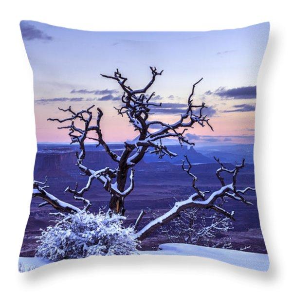 Steadfast  Throw Pillow by Dustin  LeFevre