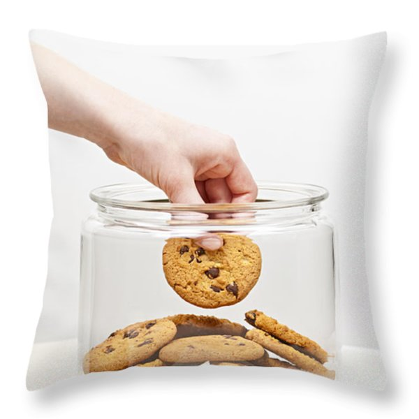 Stealing Cookies From The Cookie Jar Throw Pillow by Elena Elisseeva