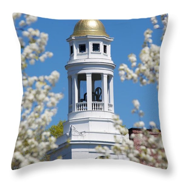 Steeple with clock Throw Pillow by Allan Morrison