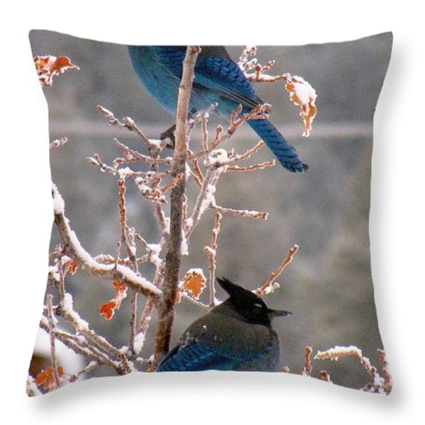 Steller's Jays Throw Pillow by Feva  Fotos